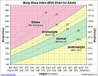 BMI Chart Template