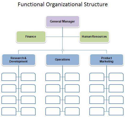 Sample Functional Organizational Structure