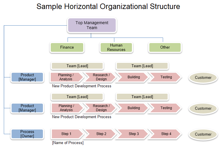 Sample Horizontal Organizational Structure