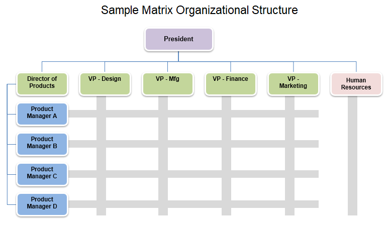 Sample Matrix Organizational Structure