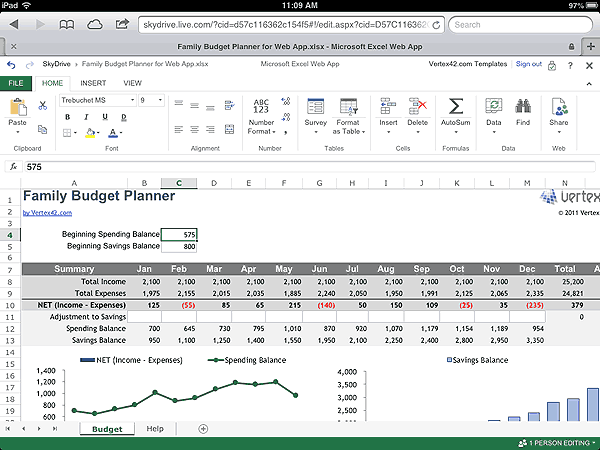 Excel Web App Template on the iPad