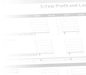 profit and loss projection template .