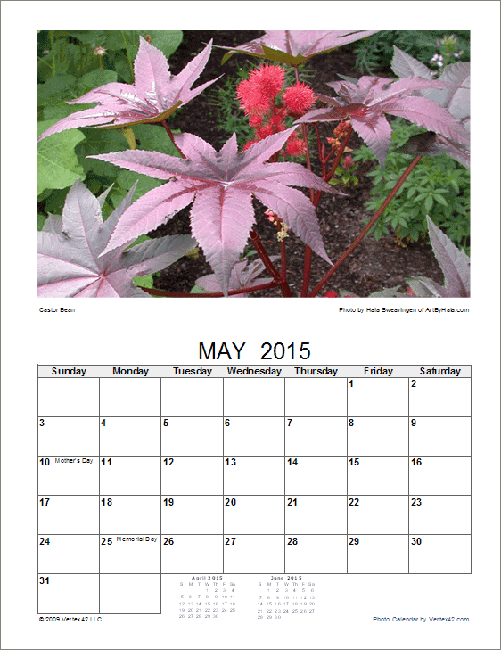 Photo calendar template create a printable photo calendar flower photo calendar saigontimesfo
