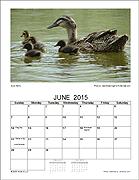 Seasons Photo Calendar